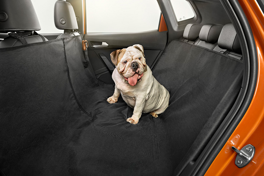 gente-maneja-mas-cuidado-cuando-lleva-perro-auto-seat.jpg